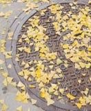 manhole royaltyfri fotografi
