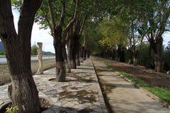 Manière à Ephesus Photo libre de droits
