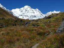 Manière au camp de base d'Annapurna photographie stock libre de droits