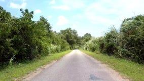 Manière blanche avec le panneau routier rouge et jaune dans la forêt verte clips vidéos