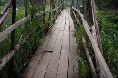 Manière cassée de promenade de pont en bois Photographie stock