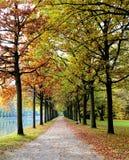 Manière d'automne Image stock