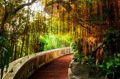 Manière d'escalier en parc avec la lumière d'or Image stock