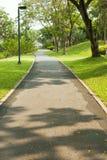Manière de bicyclette en parc vert Image stock