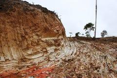Manière de boue après avoir réduit la forêt autour image stock