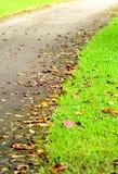 Manière de chemin Image libre de droits