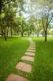 Manière de promenade dans le jardin dans la vue verticale Images libres de droits
