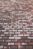 Manière de promenade de brique Images stock