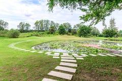 Manière de promenade de ciment autour d'étang de lotus Image libre de droits