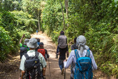 Manière du mont Kilimandjaro vers le bas images libres de droits