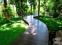 Manière en bois de courbe de promenade image libre de droits
