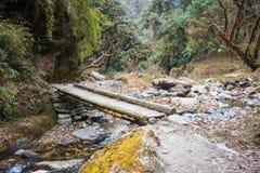 Manière sur la montagne pour le trekking Photo stock