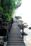 Manière tropicale de chemin près de la mer Photographie stock libre de droits