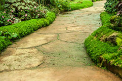 Manière verte de jardin et de promenade Images stock