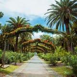 Manière verte de voûte en parc Santa Cruz de Tenerife, Ténérife, Îles Canaries de Garcia Sanabria Photos stock