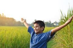 Mani aperte dell'agricoltore sul giacimento del riso Fotografie Stock