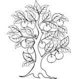 Mani che disegnano di melo per l'anti pagina di coloritura di sforzo illustrazione vettoriale