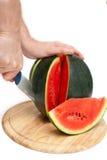 Mani che tagliano anguria Fotografia Stock