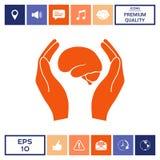 Mani che tengono cervello - icona di protezione Fotografie Stock Libere da Diritti