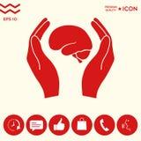 Mani che tengono cervello - icona di protezione Immagine Stock