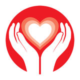 Mani che tengono cuore Fotografia Stock
