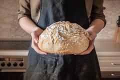 Mani che tengono grande pagnotta di pane bianco Femmina in grembiule nero dentro fotografie stock