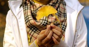 Mani che tengono i fogli di autunno Fotografie Stock