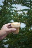 Mani che tengono la tazza di caffè fotografie stock libere da diritti