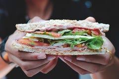Mani che tengono un panino fotografia stock libera da diritti