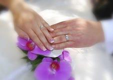 Mani con due fedi nuziali dell'oro bianco sulle orchidee porpora Fotografia Stock