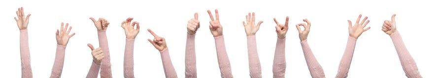 Mani con i gesti isolate su un fondo bianco immagine stock libera da diritti