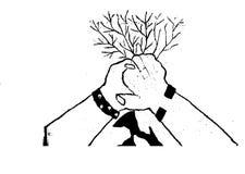 Mani con i rami Immagine Stock