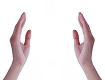 Mani con spazio vuoto Fotografia Stock Libera da Diritti