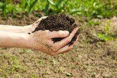 Mani con suolo Fotografia Stock Libera da Diritti
