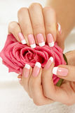 Mani con una rosa Immagine Stock Libera da Diritti