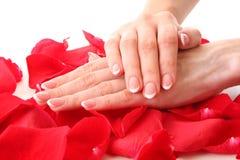 mani dei womans con il manicure Fotografie Stock Libere da Diritti