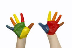 Mani del bambino Immagini Stock