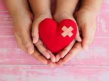 Mani del bambino e dell'adulto che tengono cuore rosso, sanità, amore, orga immagini stock