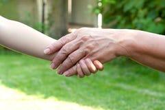 Mani del bambino piccolo e di vecchio esterno senior Fotografia Stock Libera da Diritti