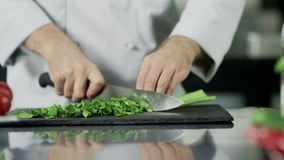 Mani del cuoco unico che tagliano sedano-rapa alla cucina Mani del cuoco unico del primo piano che cucinano pianta archivi video