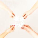 4 mani del ` delle signore Immagini Stock