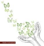 Mani del disegno che liberano farfalla. illustrazione di stock