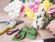 Mani del fiore della tenuta della persona Fotografia Stock
