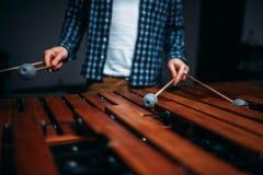 Mani del giocatore dello xilofono con i bastoni, suoni di legno Fotografia Stock