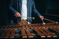 Mani del giocatore dello xilofono con i bastoni, suoni di legno Fotografia Stock Libera da Diritti