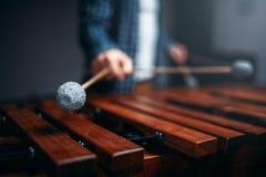 Mani del giocatore dello xilofono con i bastoni, suoni di legno Immagine Stock