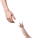 Mani del padre e del bambino che allungano l'un l'altro Isolato su bianco Immagine Stock