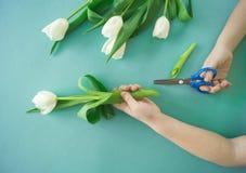 Mani del ` s dei bambini con un mazzo del punto di vista superiore dei tulipani Priorità bassa per una scheda dell'invito o una c Fotografie Stock