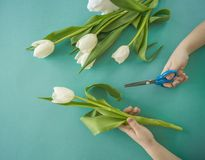 Mani del ` s dei bambini con un mazzo del punto di vista superiore dei tulipani Priorità bassa per una scheda dell'invito o una c Fotografia Stock Libera da Diritti