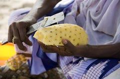 Mani dell'ananas indiano della sbucciatura della donna Fotografia Stock Libera da Diritti